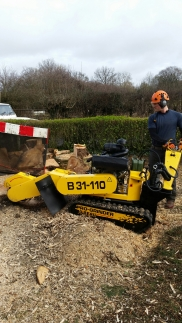 Stump grinding with the Jo-Beau