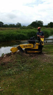 Removing tree stumps along side the river Allen in Witchampton