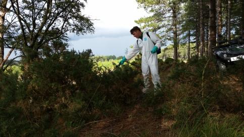 Chemical weeding with knapsacks
