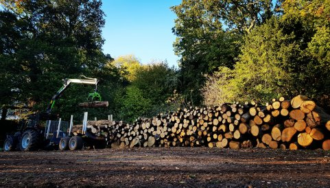 Stacking timber for firewood production