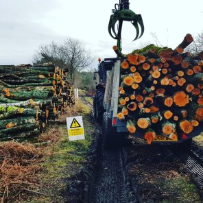 Timber being stacked with our Valtra forestry tractor