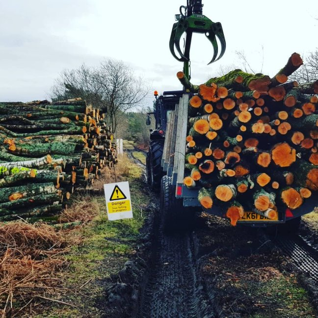 Forestry tractor stacking firewood