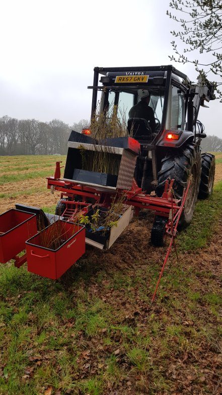 Tree planting machine